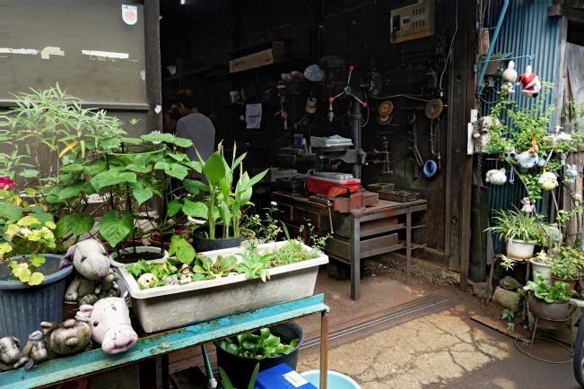 kss-plants-into-wshopr2