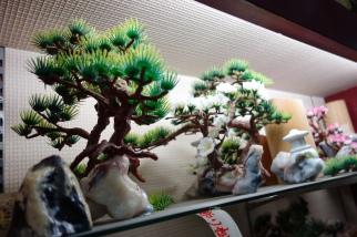OS bonsai