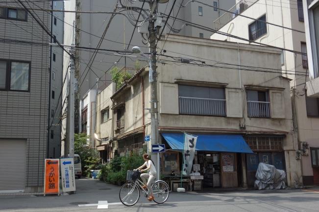 Tofuya long
