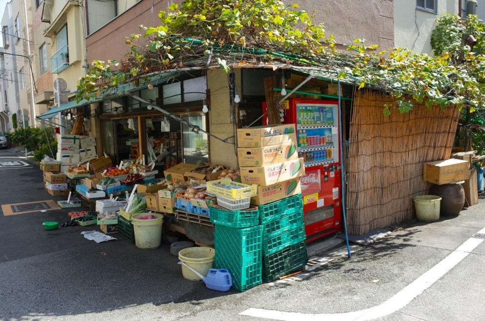fruit&veg corner large